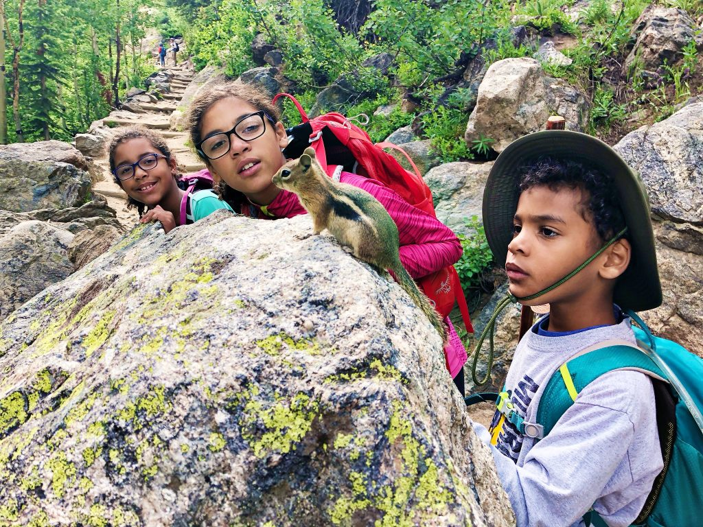 three kids look closely at a chipmunk that is not afraid of them at rocky mountain national park