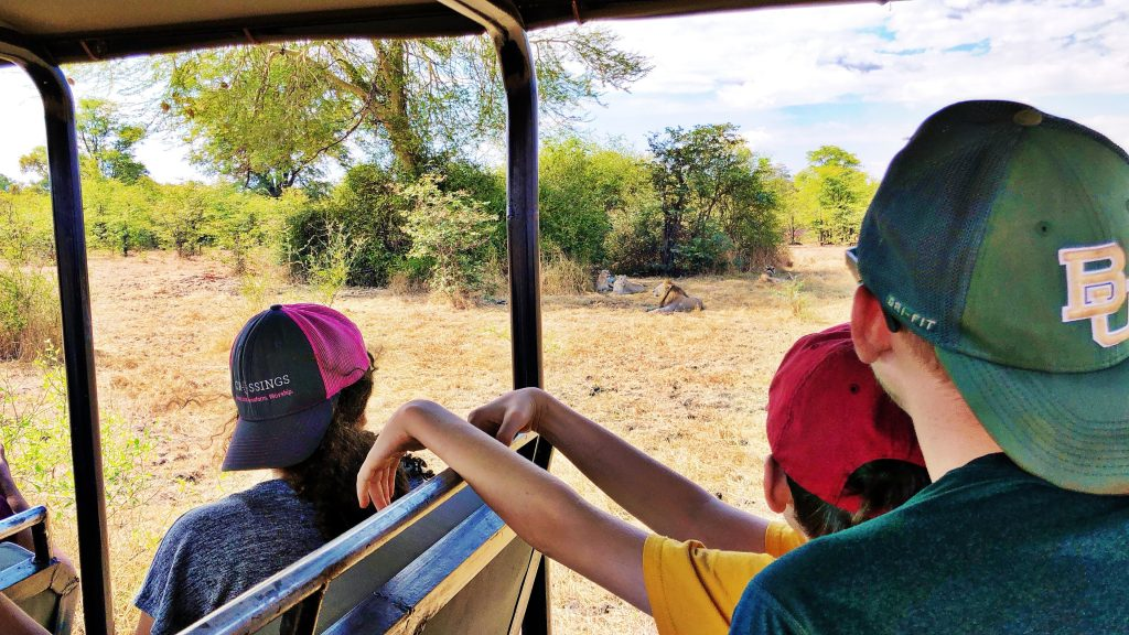 on safari at Liwonde National Park in Malawi a man and children park in an open jeep a few yards away from four adult lions lounging in the shade with a dead antelope