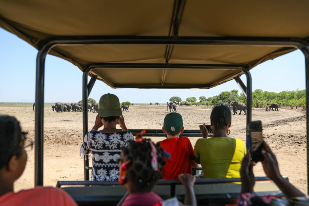 on safari at Liwonde National Park in Malawi a group of people in an open jeep stand to take pictures of a herd of elephants in front of them