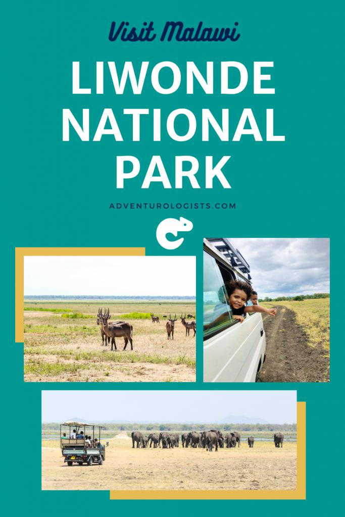 pinterest image visit malawi liwonde national park